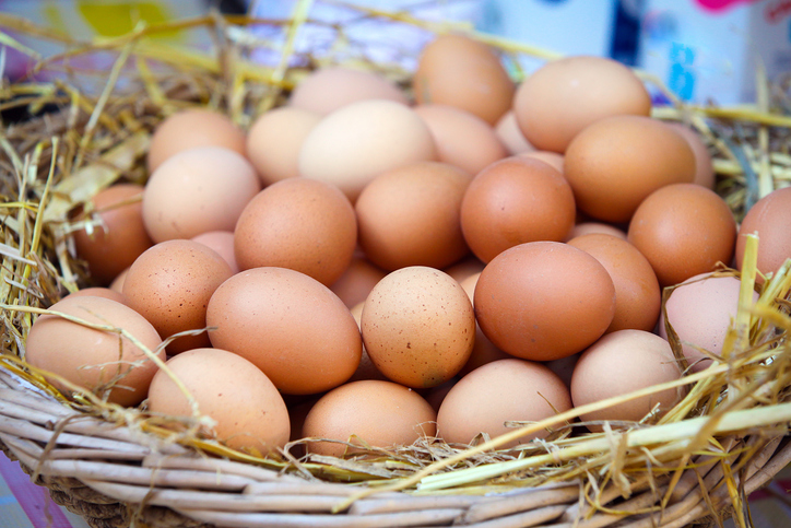 Selling Your Excess Eggs